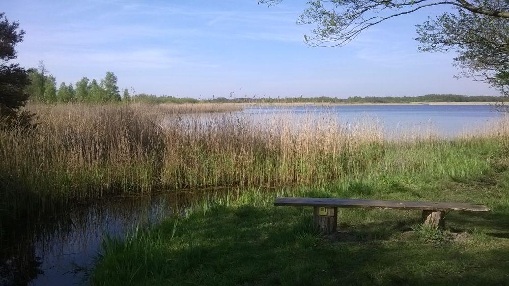 Foto's van wandeltochten in Nederland